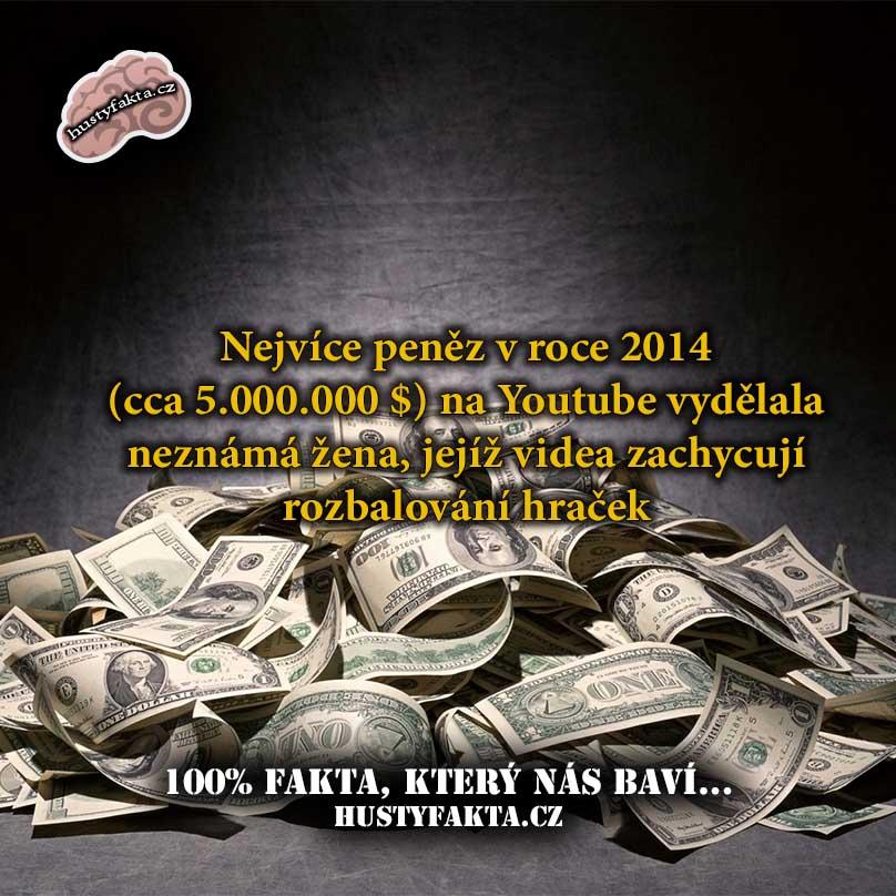 Fakt119 - www.hustyfakta.cz